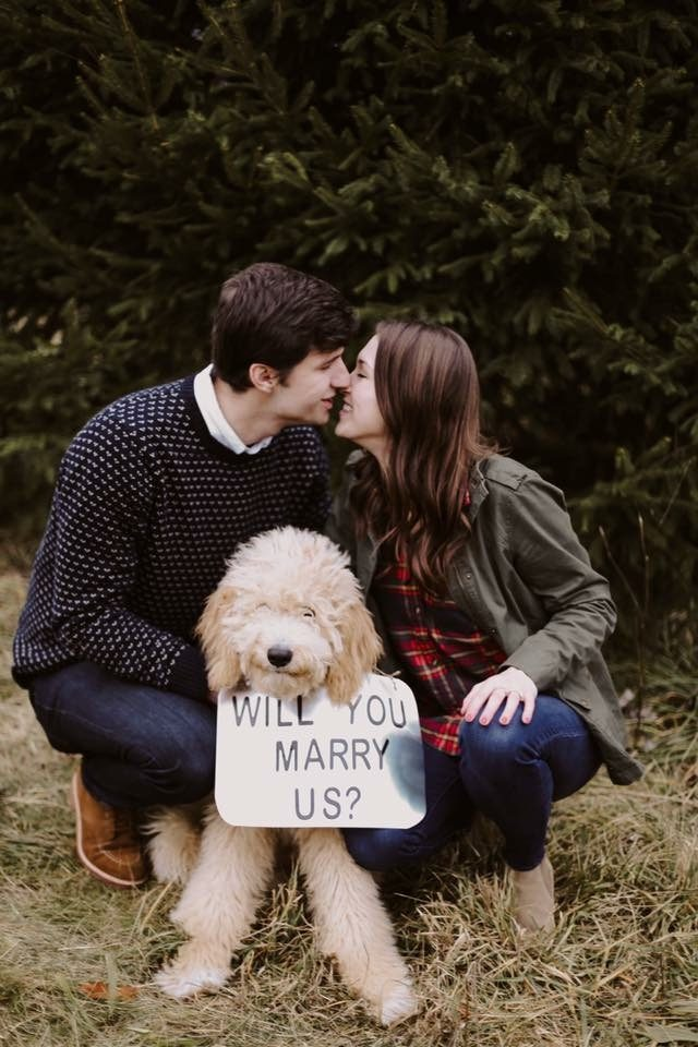 marriage proposal idea with a pet