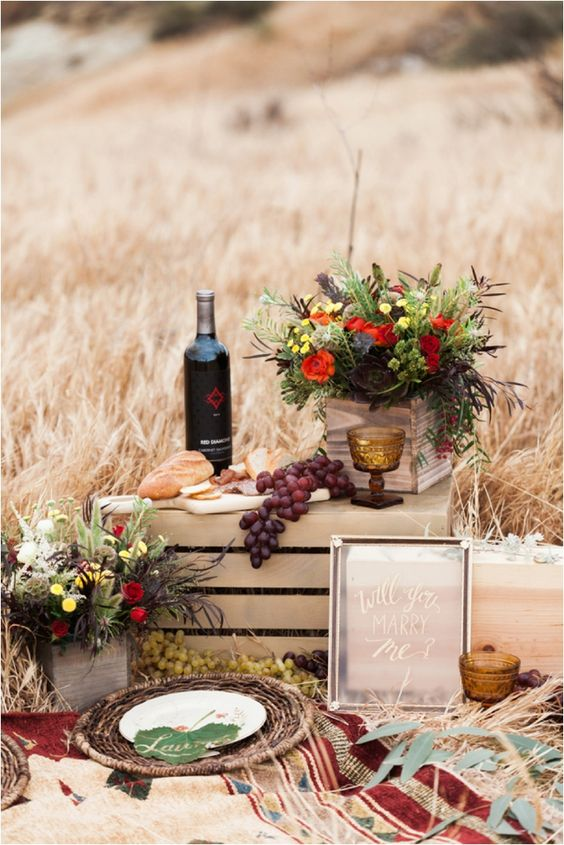 picnic proposal idea