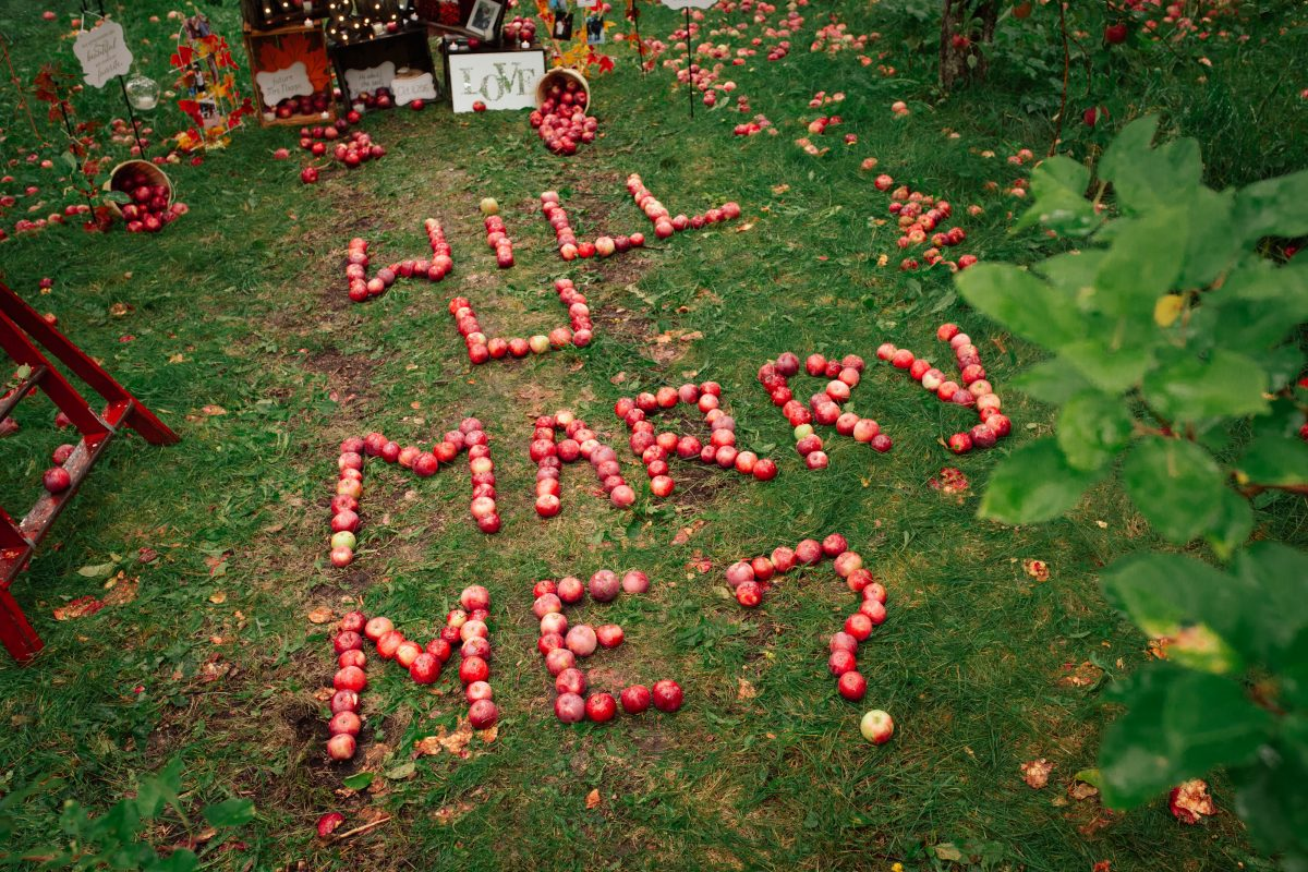 eco-friendly marriage proposal idea with apples
